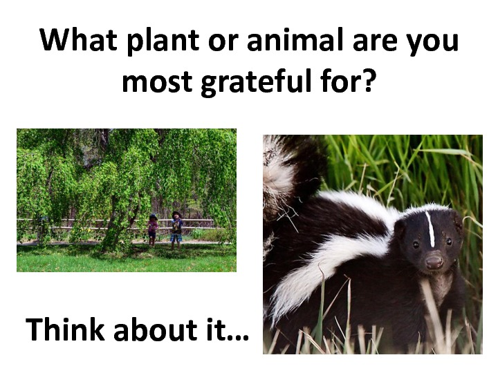 gratitude-slides-92
